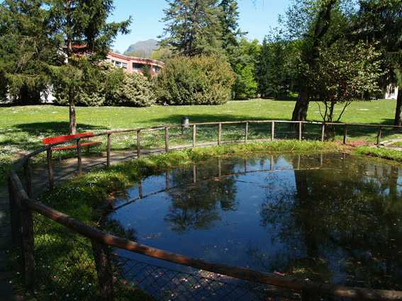 Parco Casvegno