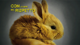 banner-sito-coniglio1010x300-px