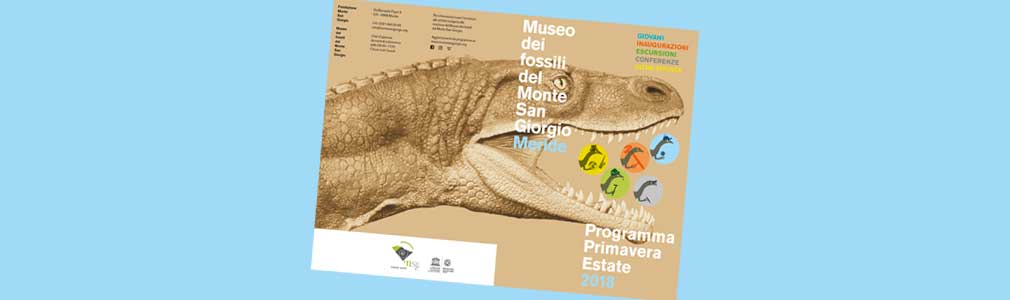 Libera e classifica i fossili